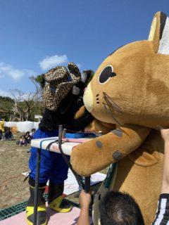 黒島は「牛祭」竹富島は「ネコ祭」^^